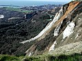 Rock fall at Folkestone Warren - geograph.org.uk - 266004.jpg