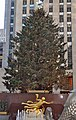 Rockefeller Center Christmas Tree 2011.jpg