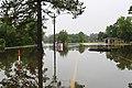 Roman Forest Flood Waters - 4-19-16 (26523248035).jpg
