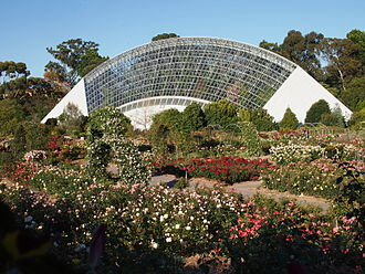Adelaide Botanic Garden - An early morning view of the rose garden, with the Bicentennial Conservatory in the background