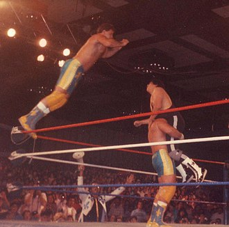 Glossary of professional wrestling terms - The Fabulous Rougeaus performing a double team maneuver
