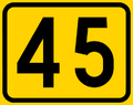 Route 45-FIN.png
