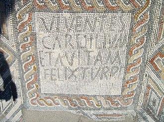 Villa of Torre de Palma - Image: Ruínas romanas de Torres Novas