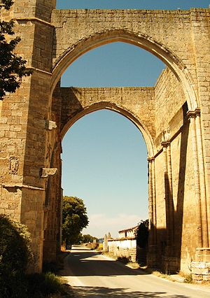 Castrojeriz - Arch on the ruins of the San Antón convent.