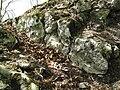 Ruine Lägelen (Wagenburg), Donautal 09.JPG