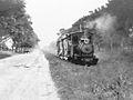 Rural Tramway - Tucuman Province - Argentina - 1920.jpg