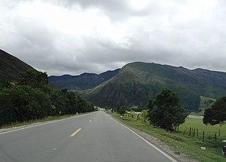 Huitaca boyacaensis - Road near Arcabuco; habitat of Huitaca boyacaensis