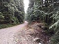SA100 service road - panoramio.jpg