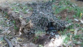 Sri Lanka Army Special Forces Regiment - Soldier of the Sri Lanka Army Special Forces Regiment demonstrating the use of a Ghillie suit for camouflage