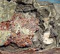 Safflorite-Dyscrasite-Stibarsen-140341.jpg