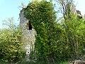 Saint-Front-la-Rivière ruines la Renaudie (49).JPG