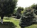 Saint-Siège d'Etchmiadzin 2017 - 20.JPG