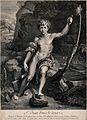 Saint John the Baptist. Engraving by F. Chéreau after Raphae Wellcome V0032467.jpg