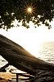 Samuel M. Spencer Beach Park, Waimea (504690) (23842418469).jpg