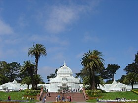 San Francisco Conservatory of Flowers 2.jpg