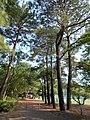 Sanno Park 05.jpg