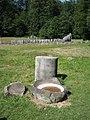 Sarmizegetusa Regia 2011 - Large Circular Sanctuary, Andesite Bowl and Column Fragment.jpg