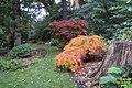 Savill Garden (32904066361).jpg