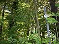 Schild Kaiser-Route Schwerte.JPG