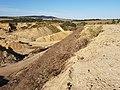 Schottergrube nordwestlich von Asparn an der Zaya sl2.jpg