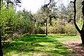 Scoutcentrum Buitenzorg Baarn - panoramio (14).jpg