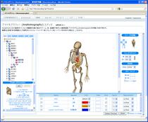Screenshot Anatomography.png