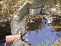 Seebach Leihgraben Becken unter Auslass A 5.jpg