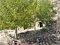 Sendero-embalse-de-Bornos P1420650.jpg
