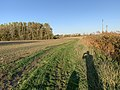 Sentier Frenet - Saint-Cyr-sur-Menthon (FR01) - 2020-10-31 - 2.jpg