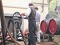Sfilata delle sagre, vinoCunico.3.jpg