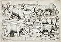 Sheet of Animals LACMA 54.70.11.jpg