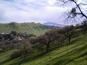 Walnut Creek, California - Shell Ridge Open Space