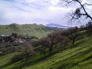 Walnut Creek, California - Shell Ridge Open Space