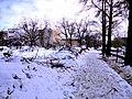 Shiraz - panoramio (59).jpg