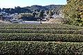 Shitara town Damine district landscape ac (3).jpg