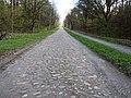 Siedenholzbahn-20210506-05.JPG