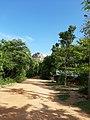 Sigiriya Rock, Sri Lanka.jpg