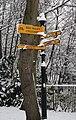 Signpost (5277359713).jpg