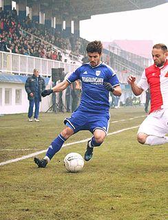 Siniša Stevanović Serbian footballer