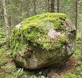 Sippulanniemi nature trail - stone.jpg