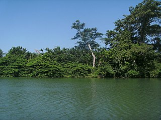Sittee River river in Belize