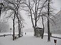 Snegopad.jpg