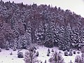 Snow In Oktober - panoramio.jpg