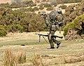 Soldier at Brisworthy.jpg