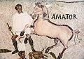 Sousse mosaic circus horses Amator.JPG