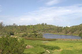 Spittal Pond.jpg