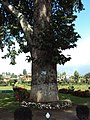 Srinagar - Shalimar Gardens 35.JPG