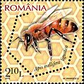 Stamps of Romania, 2010-02.jpg
