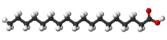 Ball-and-stick model of stearic acid