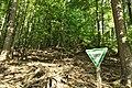 Stelzenbach Naturwaldreservat.jpg